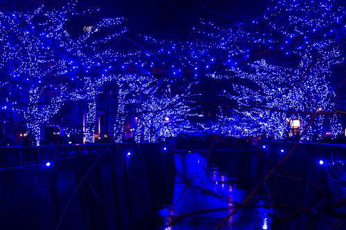 青の洞窟2014
