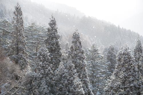雪山その10