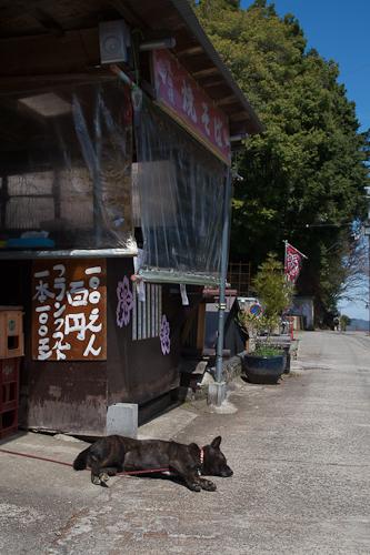 奈良 吉野山